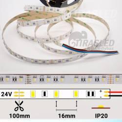 Rollo de Tira LED 24V 19W 60 LEDs/m IP20 RGB + Blanco 6000K con medidas de corte