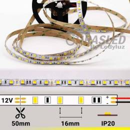 FOTO TIRA LED 12V 14,4W 60 LEDs/M 5050 LUZ AMARILLO LIMÓN encendida con datos técnicos